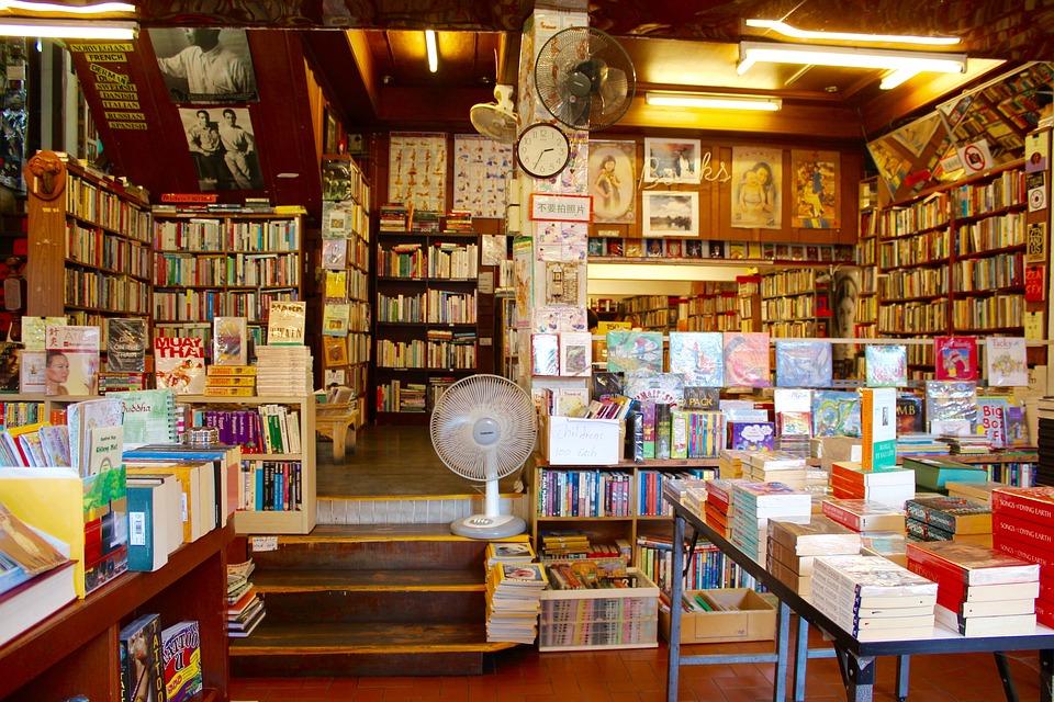 mi mundo y los libros